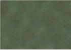 Sennelier Soft Pastels - Leaf Green 201