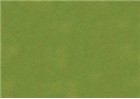 Sennelier Soft Pastels - Leaf Green 202