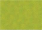 Sennelier Soft Pastels - Leaf Green 203
