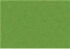 Sennelier Soft Pastels - Chromium Green 229
