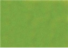 Sennelier Soft Pastels - Chromium Green 230