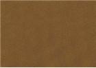 Sennelier Soft Pastels - Bronze Green Deep 160