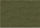 Sennelier Soft Pastels - Olive Green 237