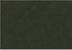 Sennelier Soft Pastels - Reseda Grey Green 210