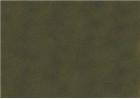 Sennelier Soft Pastels - Reseda Grey Green 211