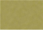 Sennelier Soft Pastels - Reseda Grey Green 214