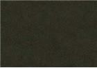 Sennelier Soft Pastels - Moss Grey Green 167