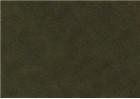 Sennelier Soft Pastels - Moss Grey Green 168