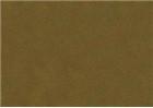 Sennelier Soft Pastels - Moss Grey Green 169