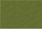Sennelier Soft Pastels - Moss Grey Green 171