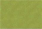 Sennelier Soft Pastels - Moss Grey Green 172