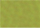 Sennelier Soft Pastels - Moss Grey Green 173