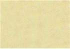 Sennelier Soft Pastels - Moss Grey Green 174