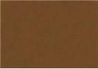 Sennelier Soft Pastels - Raw Sienna 508