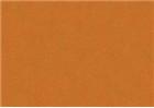 Sennelier Soft Pastels - Raw Sienna 511