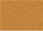 Sennelier Soft Pastels - Mummy 105