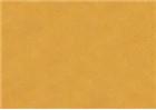 Sennelier Soft Pastels - Mummy 106