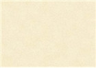Sennelier Soft Pastels - Mummy 108