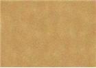 Sennelier Soft Pastels - Bronze Green Light 165