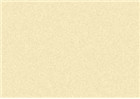 Sennelier Soft Pastels - Olive Grey 454