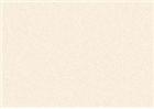 Sennelier Soft Pastels - Olive Grey 455