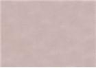 Sennelier Soft Pastels - Yellow Grey Green 497