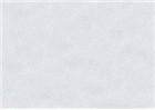 Sennelier Soft Pastels - Grey 523
