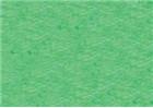 Sennelier Soft Pastels - Iridescent Emerald Green 811