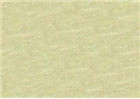 Sennelier Soft Pastels - Iridescent Olive Green 813