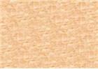 Sennelier Soft Pastels - Iridescent Green Gold 823