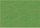 Sennelier Oil Pastels - Olive Green 046