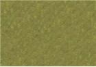 Sennelier Oil Pastels - Chromium Green Light 086