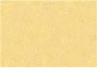 Sennelier Oil Pastels - Buff Titanium 099