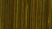 Michael Harding Oil - Green Gold S4