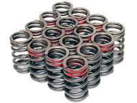 Tomei Valve Spring Set Type A for SR20DET (89-98 S13/14)
