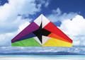"""Skydog Kites - 55"""" Delta """"Rainbow Delta"""""""