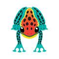 """Xkites - Midi Nylon Kite - """"Tree Frog"""""""