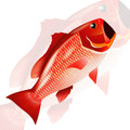 New Tech Kites - Red Snapper windsock