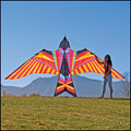 "ITTW - George Peters Sky Bird ""Aloha"""