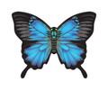 "WindnSun - Microkite Butterfly ""Blue Morpho"""