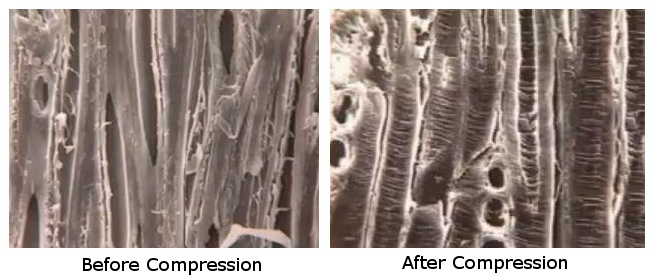 electron-micrograph-before-after.jpg