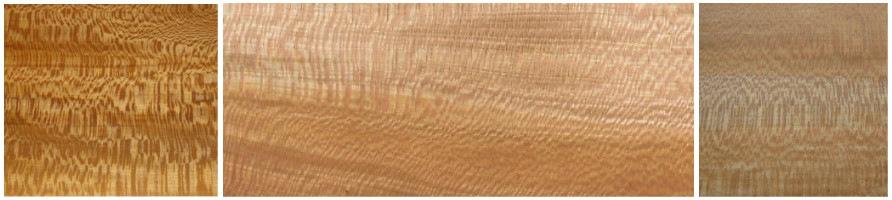 wood-sycamore-panel.jpg