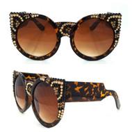 Leopard on Brown Frame