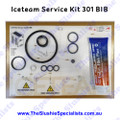 Iceteam / Carpigiani 301 BIB - Service Kit IC193-013440