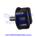 Black Condenser Screw