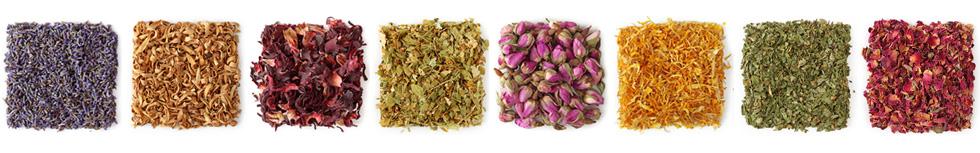 -herbs.jpg