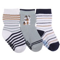 Cotton socks for babies, infants and toddlers. White, Light Blue, Navy. French Bull Dog.