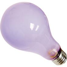 75 watt standard Chromalux bulb