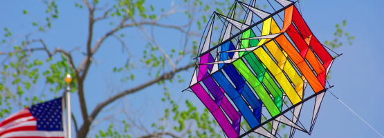 Box kites
