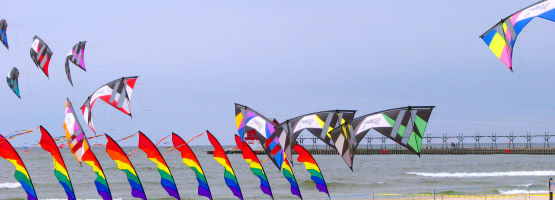 Quadline Revolution kites